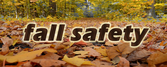 Link to Fall Safety page