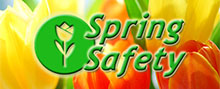 Link to Spring Safety page